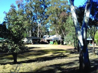 Rural 100 acre Property with Unique Country Home - Elong Elong NSW